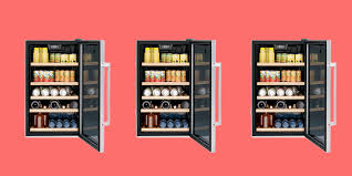 the 5 best mini fridges for small space living
