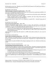 Resume Templates For It Professionals Mesmerizing Professional It Resumes Engneeuforicco