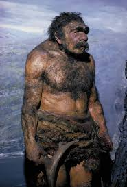 Image result for neanderthal man