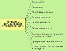 Виды правовой ответственности курсовая по гражданскому праву найден При наличии не только договорная России Вопрос о понятии многие годы является спорным науке понятия как вида социальной санкции Курсовая работа добавлен