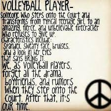 Volleyball Quotes Delectable 488 Volleyball Quotes 48 QuotePrism