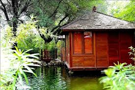 tree house jaipur. The Tree House Resort: View Of A Water Cottage Tree House Jaipur S