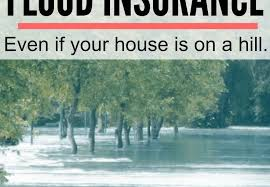 Insurance Quotes Texas Gorgeous Flood Insurance Quotes Texas Archives Mr Quotes