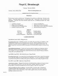 Work Resume Template Lovely Resume New Free Nursing Resume Template ...
