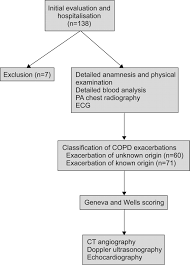 Pathophysiology Of Emphysema Flow Chart Venous Thromboemboli And Exacerbations Of Copd European