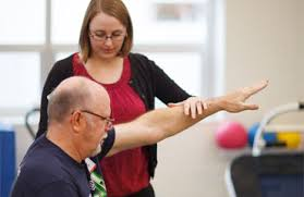 Image result for physical therapy programs