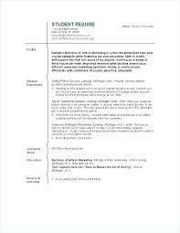 Resume Builder Free Online Printable Resume Builder Student Free Resume Builder Student Resume Builder
