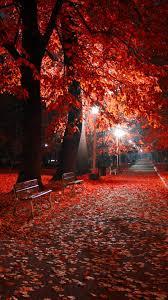 autumn night wallpaper free Download ...