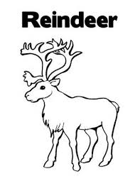 Small Picture Free Reindeer Colouring Pages 11 Baby Reindeer Coloring Page