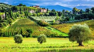 day trips from florence with kids in