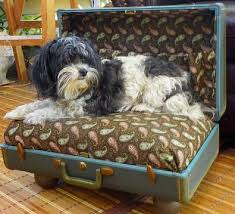 repurpose furniture dog. 5 Ideas To Repurpose Old Furniture For Your Pet Dog N