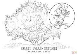 Small Picture Arizona State Tree coloring page Free Printable Coloring Pages
