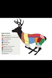 Wild Game Meat Cutting Chart Venison Butchering Chart Exactly What I Was Looking For