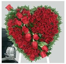 ܓ✿ انتن حبيباتي ܓ✿