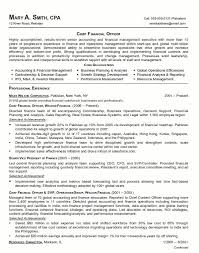 Finance Manager Resume From Vp Finance Resume Examples Examples Of
