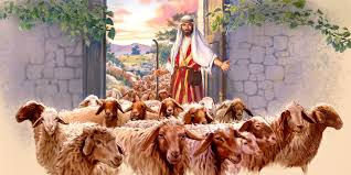 Resultado de imagem para Bom Pastor