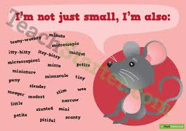 Small Picture Other words for Small Synonym Poster
