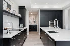 Custom Kitchen Cabinets Redl Kitchen Studio