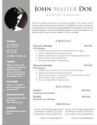 Resume Template Download Extraordinary Free Professional Resume Templates Download Coachoutletus