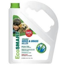 The weed killer is safe for organic use, so you can be certain that you can get rid of and desiccate all grasses and weeds without any toxic chemicals and ingredients. Eco Smart Organic Weed Grass Killer Hendricks Feed Seed Co Inc