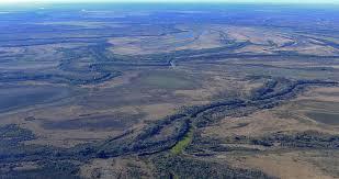 Medio ambiente en colapso: el río Paraná sigue en bajante