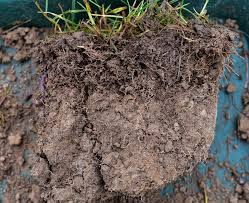 Making Your Soil Rain Ready Skywatchers Its Time To Look Down