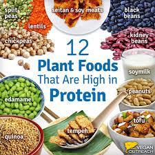 Tips For New Vegans Vegan Health