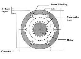 multi phase induction motors types