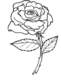 Small Picture Roses 2 Nature Printable coloring pages