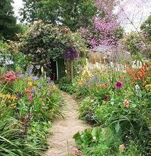19 wildflower gardening ideas