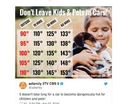 Please Remember When Someone Is In A Hot Car Az Kidz N More
