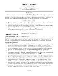 risk manager resume