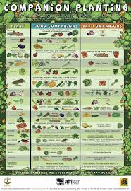 Vegetable Companion Planting Charts Available Seeds To Borrow Seed Library At Washtenaw