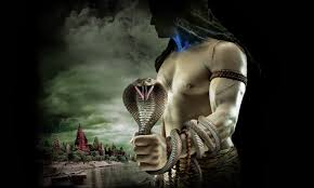 lord shiva catching naga hd wallpapers free get latest wallpapers