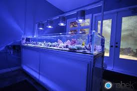 led lighting diy. Diy Aquarium Led Lighting 682 Cool Fish Tanks Aquariums And Reef Uptodate Snapshoot Include