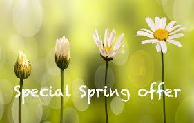 Risultati immagini per spring offer