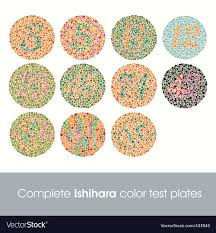 Color Vision Chart Pdf Complete Ishihara Color Test