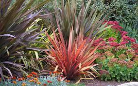 how to tidy garden borders in autumn