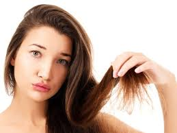 home remes for split ends split ends hair care split ends remedy