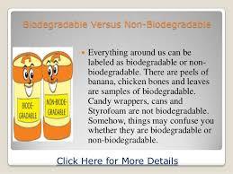Biodegradable Versus Non Biodegradable