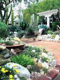 diy cactus garden small cactus garden outdoor cactus garden design small cactus garden design trendy best outdoor cactus garden small cactus garden diy