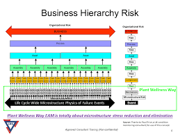Business Risk Hierarchy Dependency Goes From Microstructure