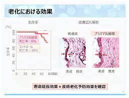 プラズマ 乳酸菌 効果