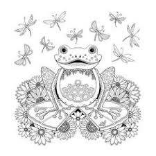 Small Picture tree frog tropical wildlife Coloring pages colouring adult