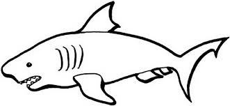 Small Picture Shark Coloring Pages Clipart Panda Free Clipart Images