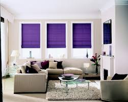 Purple Decorating Living Rooms Baby Nursery Decorative Window Blinds Or Shade Kid Proof Blinds