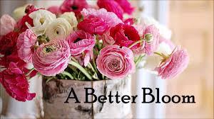 405 309 3300 edmond ok florist flower a better bloom edmond