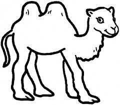 Small Picture Two Humped Camel Coloring Page Download Print Online Coloring