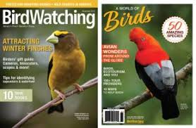 birdwatching magazine a subscription to birdwatching makes a great gift each issue includes bird identification advice from authors kenn kaufman and david