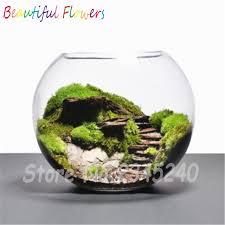 Decorative Moss Balls 100pcs sphagnum moss bonsai moss seeds Lovely moss ball decorative 19